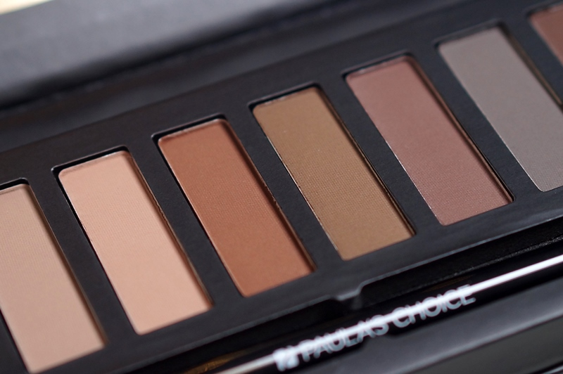 Paula's-choice-the-nude-mattes-palette-urban-decay-dupe-naked-basics (14)